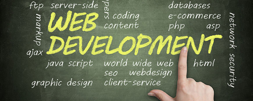 Web Programming for Successful Business