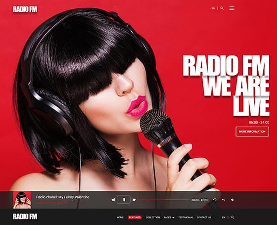 WordPress Radio Template