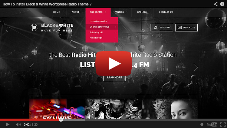 How to install Radio WordPress Theme