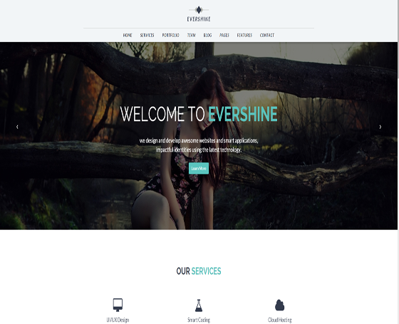 Evershine -Multipurpose HTML5 template