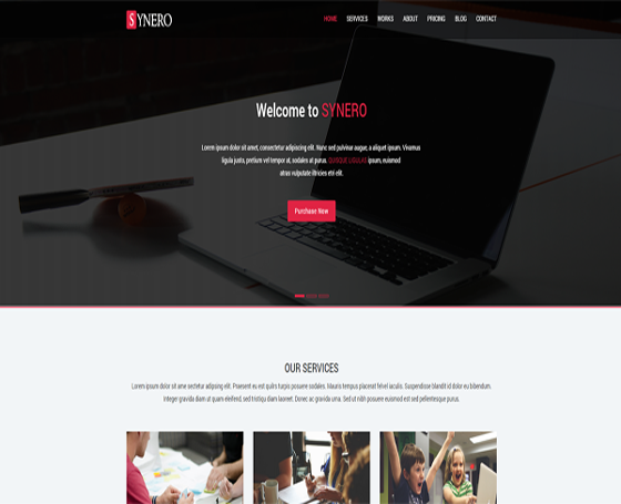 SYNERO Multi-purpose one page theme