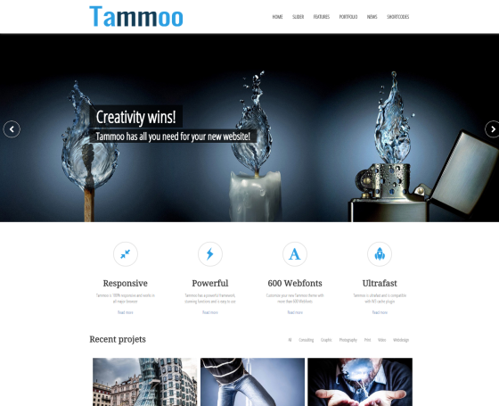 Tammoo - Multipurpose WordPress Theme