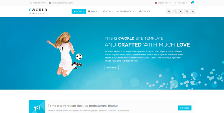CWorld - Multi Purpose Bootstrap Template