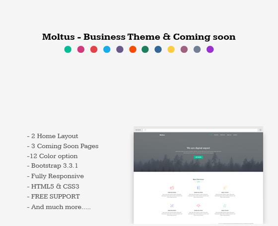 Moltus - Business Template