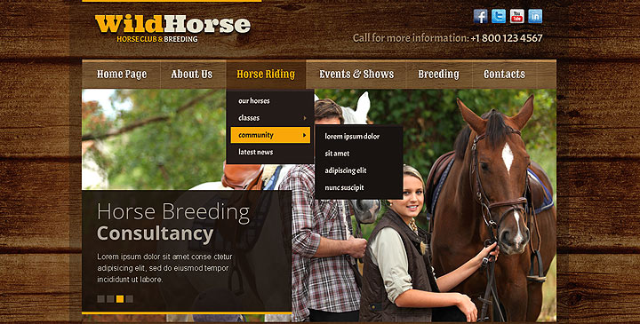 Wild Horse HTML5 Bootstrap Template