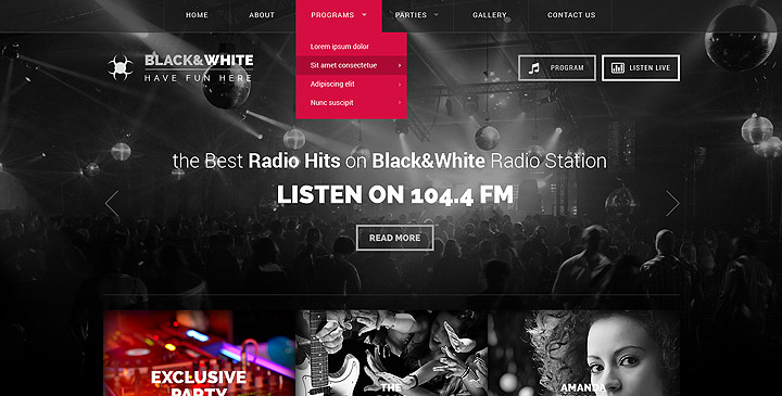 Radio WordPress Theme
