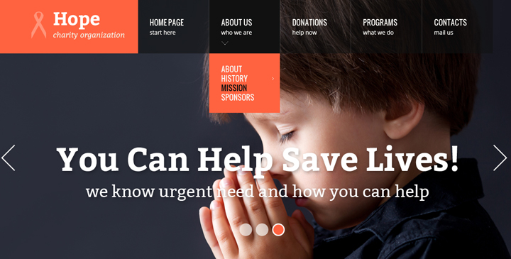 charity organizations free website templates