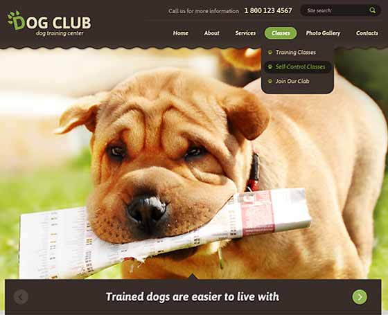 Dog Club bootstrap theme