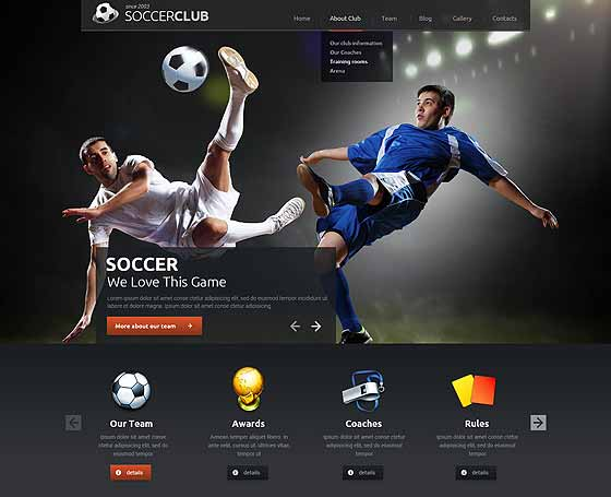 Football (soccer) WordPress Theme
